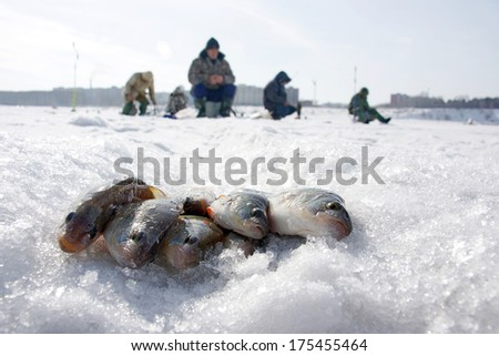 Fish and fishermen on the snow on winter fishing - stock photo