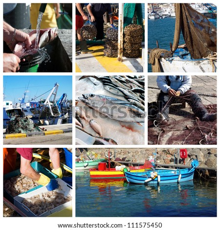 Fish and fishing - stock photo