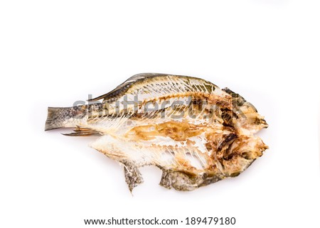 Stock images similar to id 36860689 abstract fish skeleton for Fish bone broth