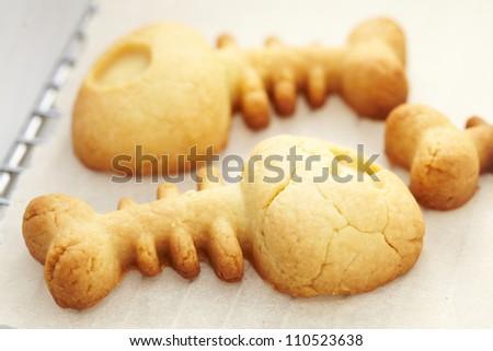 Fish bones cookies - stock photo