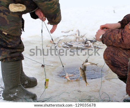 fish catching by a marine net in the winter in an ice-hole
