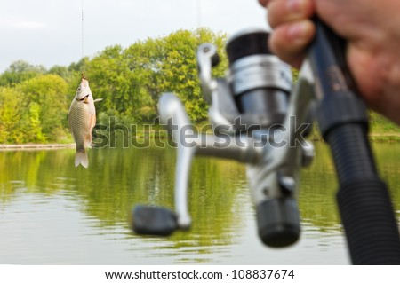 fish caught on a hook - stock photo