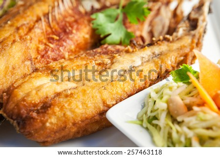 Fish dish - deep fried fish fillet