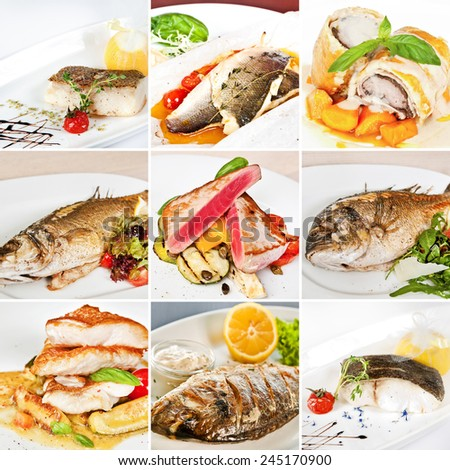 Fish dishes collage including lemon sole, baked sea bass, white atlantic cod, dorado, tuna steaks with vegetables, grouper fillet and barramundi fillet - stock photo