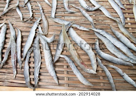 fish dried - stock photo