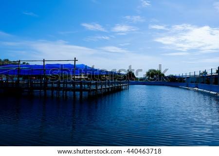 fish farm , aquaculture with blue tone - stock photo