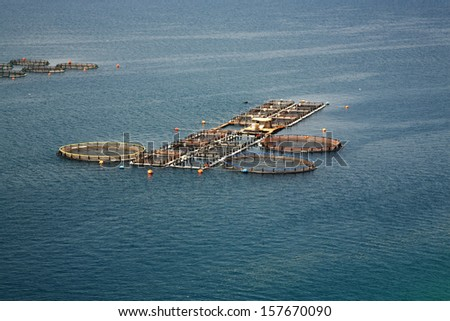 Fish farm in Kefalonia in Greece - stock photo