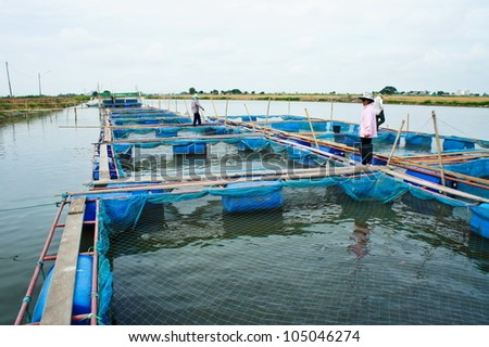 Fish farm located in thailand country - stock photo