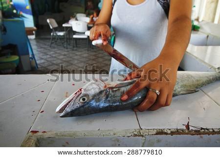 fish freshly caught fish of the Yucatan peninsula Mexico - stock photo