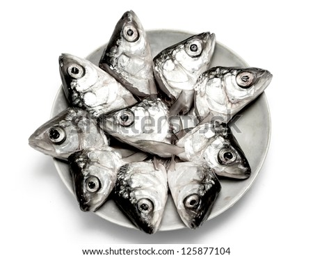 how to put fish plate