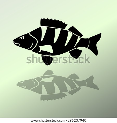 Percidae Stock Images, Royaltyfree Images & Vectors. Different Design Signs. Concrete Signs. Solar Signs Of Stroke. Emoticon Signs Of Stroke. Bingo Signs. H20 Signs Of Stroke. Dwi Signs. Relationship Signs Of Stroke