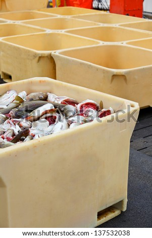 Fish in large plastic fishing containers with ice in Iceland harbor. Vertical view - stock photo