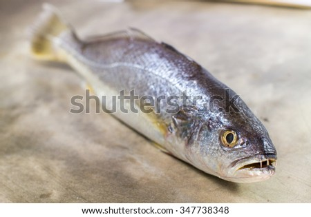 Fish Ingredient for dinner  - stock photo