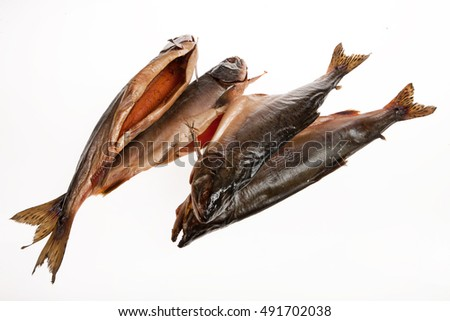 Fish on an isolated studio background