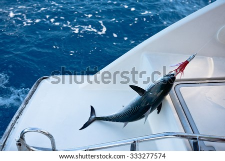 Fish on the hook. Fishing from a sailing yacht. - stock photo