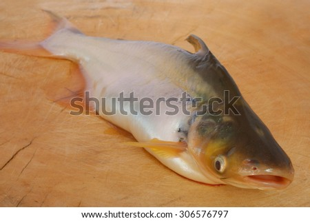 fish on wooden table