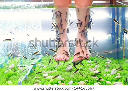 Fish pedicure stock images royalty free images vectors for Garra fish spa