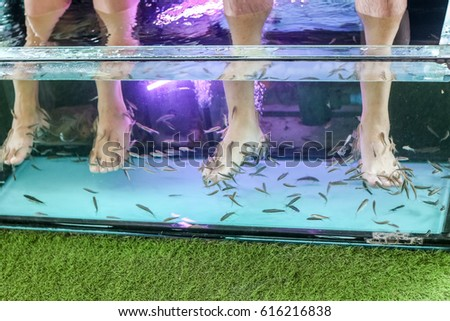 Doctor fish stock images royalty free images vectors for Fish foot spa