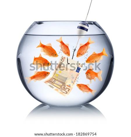 fish temptation concept - stock photo