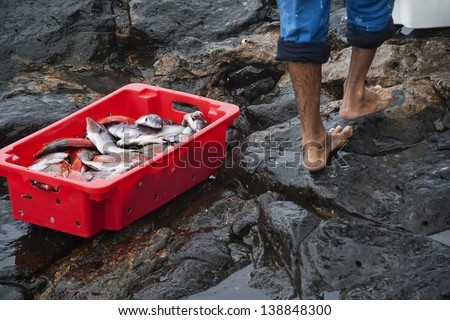Fisher in a port - stock photo