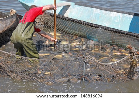 Fisherman catches a fish - stock photo