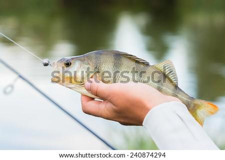 Fisherman caught a fish. - stock photo
