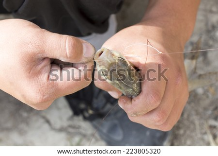 fisherman caught a fish macro - stock photo