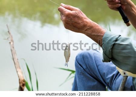 fisherman caught small bream fish from Kuban River, Russia - stock photo