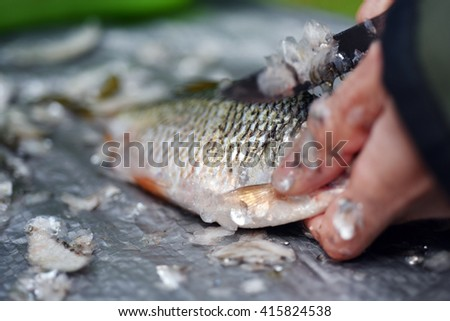 Fisherman cleaning a fish - stock photo
