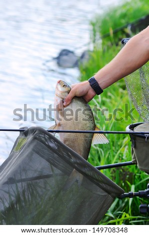 Fisherman holding a big bream catching in a river - stock photo