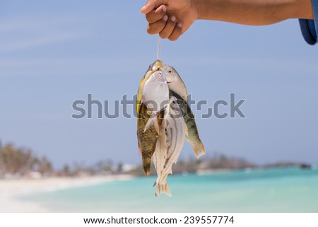 Fisherman holding fish catch against the sky - stock photo