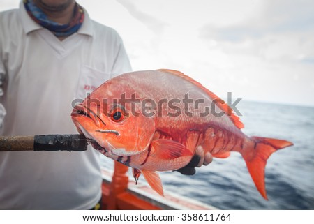 fisherman holding red fish on the fishing boat - stock photo