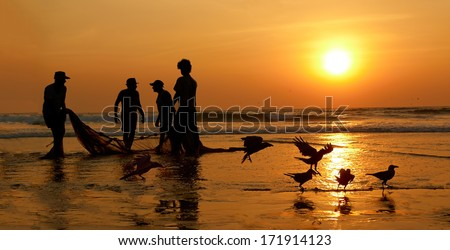 Fishermen dragged ashore network. Sunset, the Arabian Sea.