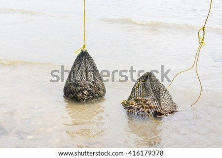Fishery at sea / seashells in net bag /prepared shellfish/sea life topic/keep animals for being alive  - stock photo
