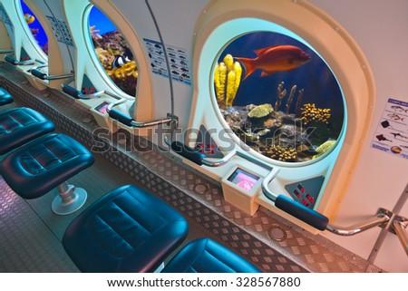 Fishes in submarine window - underwater marine life - stock photo