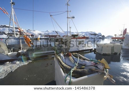 Fishing boat in harbour Norway