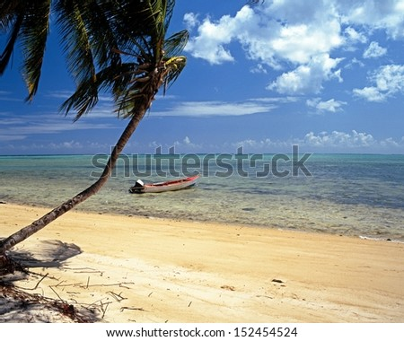 Fishing boat tied to a tree along Pigeon Point beach, Tobago, Trinidad and Tobago, Caribbean, West Indies