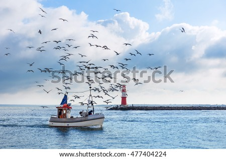 Fishing boat with seagulls in Warnemünde near Rostock, Germany