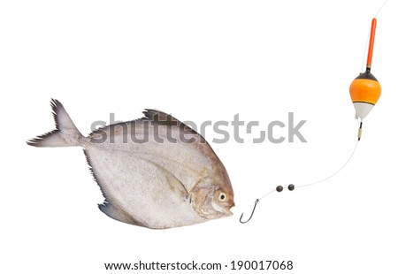 Fishing concept, fish hook and float with fish isolated on white - stock photo