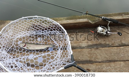 Fishing trout. Trout fishing on the lake. Caught trout. - stock photo