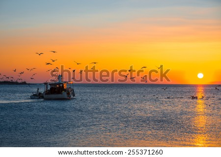 Fising boat going fishing with seagulls on a beautifull sunset - stock photo
