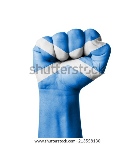 Fist of Scotland flag painted - stock photo