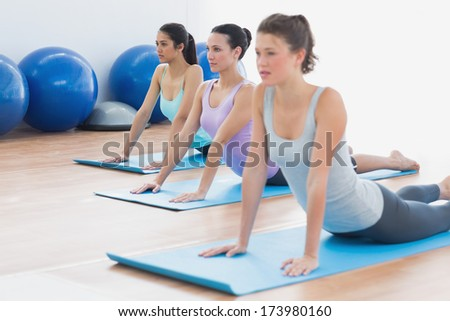 Fit class doing the cobra pose in a bright fitness studio - stock photo