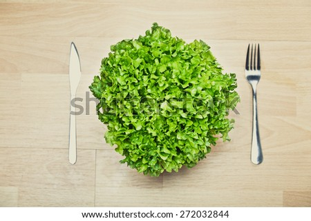 Fitness concept with healthy dieting and healthy lifestyle.Concept of diet,health and nutrition.Vibrant colorful vegetable in the bowl.Eating salad.Bright green lettuce diet meal - stock photo