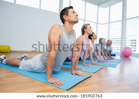 Fitness group doing cobra pose in row at the yoga class