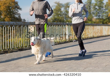 fitness, sport, people and jogging concept - close up of couple with dog running outdoors