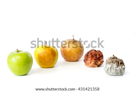 Five apples in different stages of decay against white background - stock photo