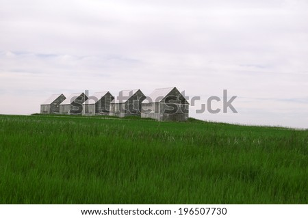Five buildings in a grassy field lined up together. - stock photo