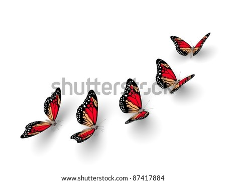 Five butterflies isolated on white. 3d illustration - stock photo