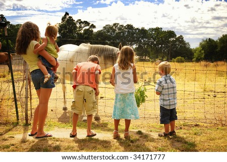 Five caucasian children visiting injured horse on farm - stock photo